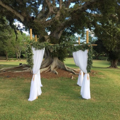Bamboo Wedding Arch