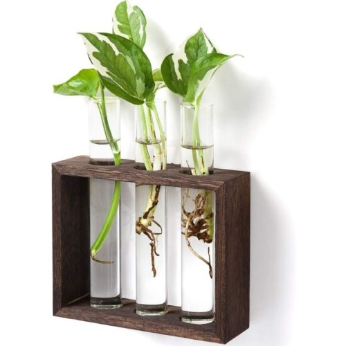 Test Tube with frame set