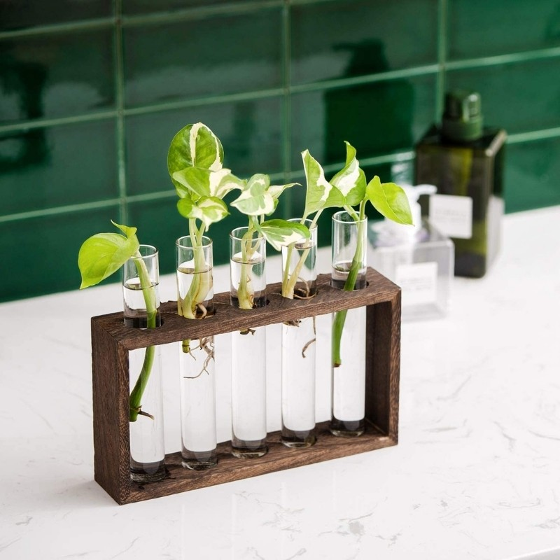 Test Tube with frame set of 5