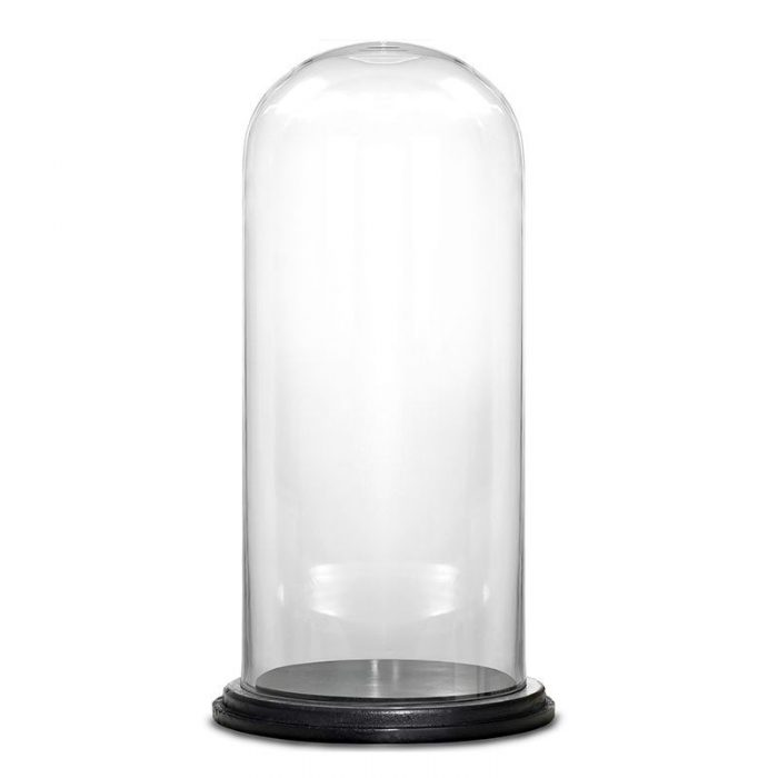 Glass Dome Vase Black Base