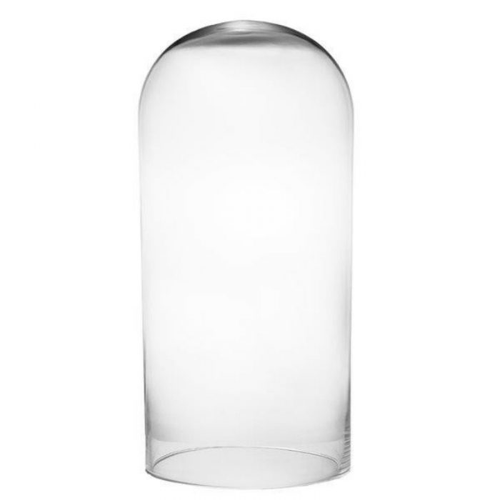 Glass Dome Vase No Base